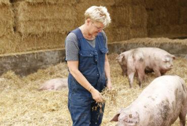 Boeren Annechien in haar twee sterren Beter Leven varkensstal