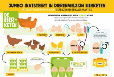 Jumbo investeert in Dierenwelzijn van de eierketen met RespEGGt