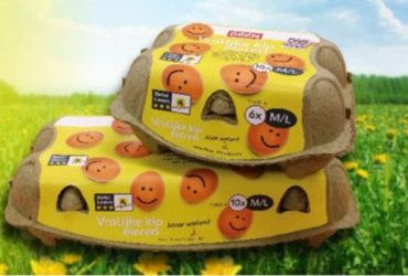De eieren van Vrolijke Kip
